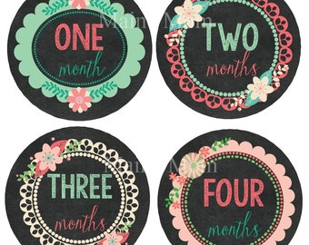 READY To Ship Baby Girl Precut  Monthly Stickers Month Stickers Floral  Chalkboard  Milestone Bodysuit Gift