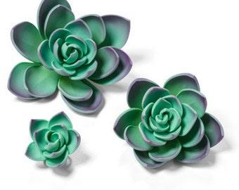 6 Purple / Teal Succulent Gum Paste Flowers