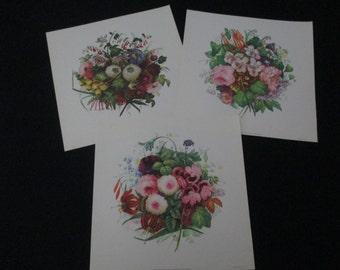 3 Vintage Prints Copeland Squares Paper Ephemera Wall Decor Flowers Floral