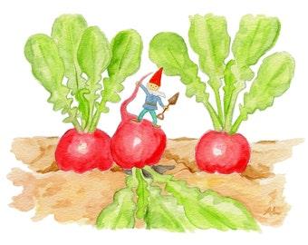 """Radish Garden Gnome 5x7"""" PRINT"""