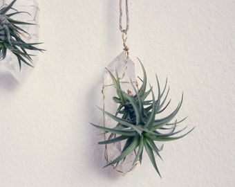 Air Plant on Crystal, Hanging Air Plant Display, Wire Wrapped, Bohemian Decor, Geometric Decor, Gift Under 30