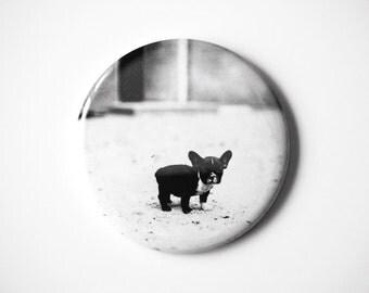 "Baby French Bulldog  - 2.25"" Magnet"
