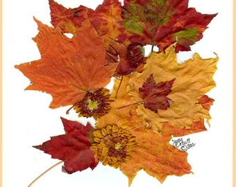 Botanical print, Bouquet of autumn leaves, autumn leaves blank notecard,,get well soon card, thinking of You.