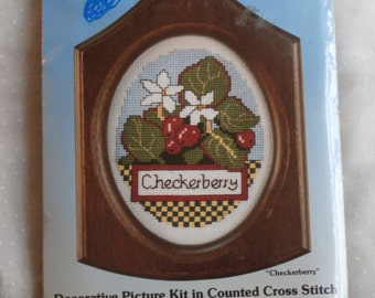 Checkerberry with Frame Paragon Counted Cross Stitch Kit, Vintage 1980s