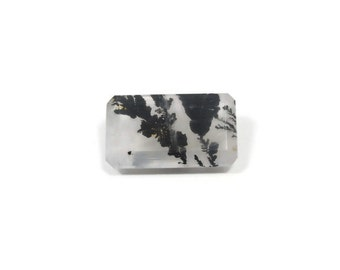 Genuine Dendritic Quartz 17x10x6mm Emerald cut 8.40ct