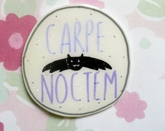 Carpe Noctem, vampire brooch, pastel grunge, Halloween, Witch brooch, spooky,witchy, witch, Brooch, soft grunge, tumblr,90s