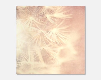 dandelion photograph, baby girl decor, nature canvas wrap, flower photography, pink girls room, gift for new mom, ready to hang art