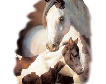 Medicine Hat Mare Colt Horses on Ladies T Shirt