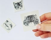 BRAND NEW grumpy cat temporary tattoos - set of 7 fake cat tatts - cats - pussycat - kitten - kitty - cattoos