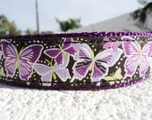 """Sale Dog Collar Butterfly Fantasy 1"""" width Quick Release or Martingale collar style adjustable"""