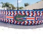 "Florida Gators Dog Collar, Quick Release or Martingale collar, 1"" wide football, NFL - no other widths. See details for info"