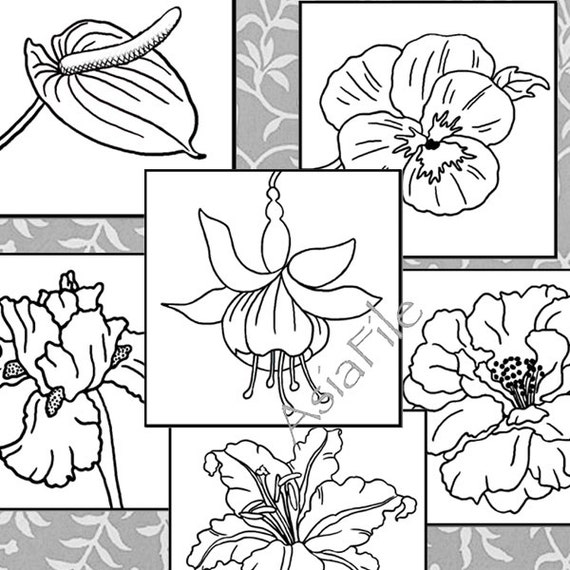 Coloring Pages For All Ages Digital Art Instant Downloads
