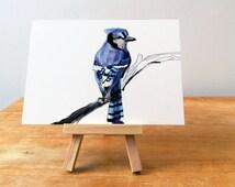 "Blue Jay Print, Bird Illustration, Digital Drawing, Animal Wildlife Art Postcard  4"" x 6"" BJ1"