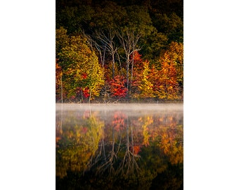 Mist on Hall Lake with Autumn Tree Reflections in the Gun Lake Recreation Area in West Michigan No.0112 A Fall Vertical Landscape Photograph
