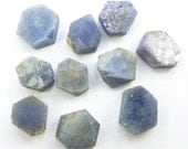 SAPPHIRE. Natural. Hexagon. Can Be Drilled. 10 pc. 49.96 cts. 8 to 12 mm. 3 to 5 mm thick. (S1802)