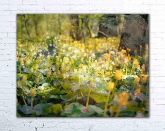Fairy Tale Forest II - PHOTO, enchanted forest, woodland decor, yellow flowers, spring photography, magical, nature photo