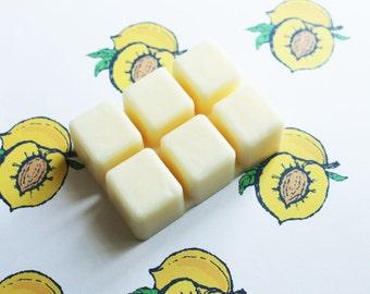 Apricot Scented Melts - Natural Vegan Soy Wax - Soy Candles - Soy Wax Melts - Soy Tarts