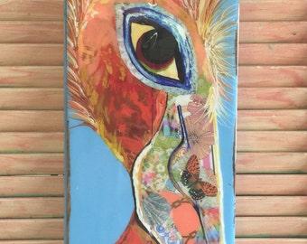 Periwinkle Pelican