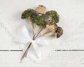 Fairy Garden Mushrooms - Set of 6 Rustic Woodland Craft Picks