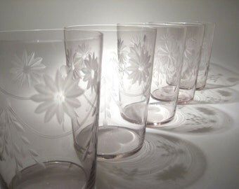 5 Etched Glasses