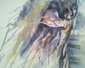 Wild At Heart, dall sheep painting, original watercolor