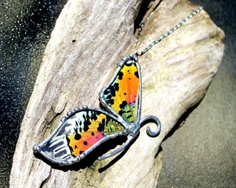 Madagascan Sunset Moth Necklace, Statement Necklace, Real Moth Necklace