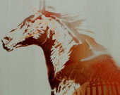 Unicorn Painting Canvas Art 14x18 Horse Illustration Magical Creature Graffiti Street Art Pop Art Harry Potter Inspired Animal Study