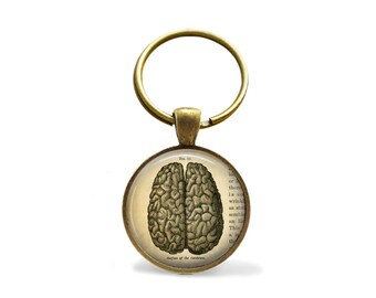 THE BRAIN KEYCHAIN / Vintage Anatomy Keychain / Brain Key Ring / Gift For Doctor / Gift Boxed