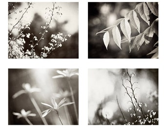 Neutral Nature Photo Set, black and white pictures four grey brown photography gray leaves prints botanical wall art branches artwork