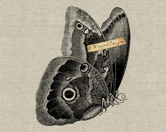 Butterfly. Instant Download Digital Image No.328 Iron-On Transfer to Fabric (burlap, linen) Paper Prints (cards, tags)