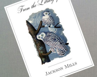 Vintage Owl Bookplates, personalized, set of 24