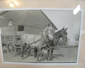 Horse drawn freight wagon photograph postcard rural America vintage photography