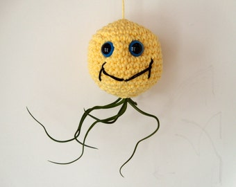 Mellow Yellow Airtopus - Hanging air plant container with bulbosa air plant included