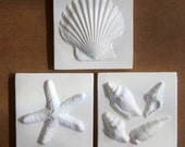 Sea Shell Ceramic Tiles  -- Set of three 3x3 SeaShore tiles in Bright White glaze,  IN STOCK, Scallop Shell, Starfish, Seashells
