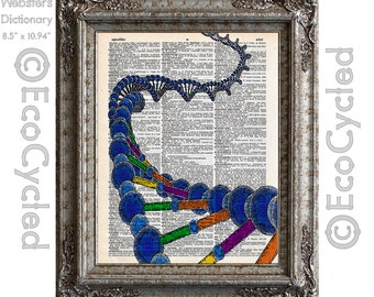 DNA Deoxyribonucleic Acid on Vintage Upcycled Dictionary Art Print Book Art Print Recycled Science