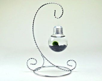 Marimo Moss Ball in a Floating Light Bulb, Mini Lightbulb Aquarium with Silver Stand, Hanging Light Bulb Aquarium, Light Bulb Table Decor