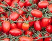 Tomato - Chinese Purple Plum - Heirloom - NO GMO = 25 Seeds