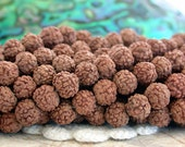 6/7mm Rudraksha Beads, Natural Undyed Rudraksha Seeds, 108 Rudraksha Beads, Natural Beads, Prayer Beads, Prayer Malas NAT-250