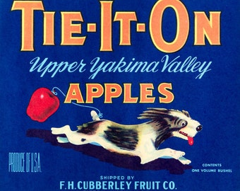 Original Vinatge 1940s Crate Label Tie It On Apples Advertising New Old Stock