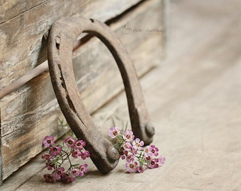 Rustic Photography, Equestrian Art Print, Horse Decor, Farmhouse Chic Decor, Entryway Art, Horseshoe Picture | 'Old Shoe'