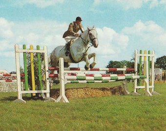 In the Show Ring - Vintage 1950s Hunter Over Fences Cameracolour Postcard