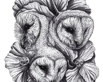Original - Barn Owls With Hibiscus Flowers Fine Art by Danielle Trudeau