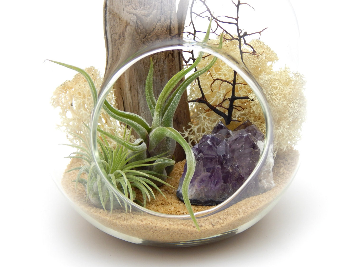 Air Plant Terrarium Kit With Amethyst by BlissGardensBoutique
