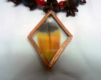 Scarlett Macaw Feather Pendant on Seed Necklace