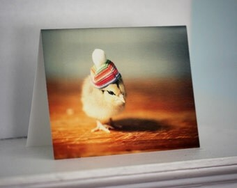 Greeting Card Chick in Rainbow Hat Folded Photo Chicken Card