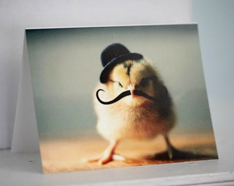 Greeting Card Set Chick in Bowler Hat Mustache Folded Photo Note Cards With Envelopes (4) Chicken Stationary Baby Animals