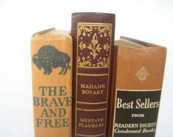 Sale..Beautiful Set of Three Books in a Terra Cotta Color Story