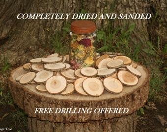 Rustic Wood Disc 350 Dried Tree Slices Medium Cherry Tree Cookies Wood Blanks Wood Burning Blanks Name Tags Wedding Decor Art Craft Blanks