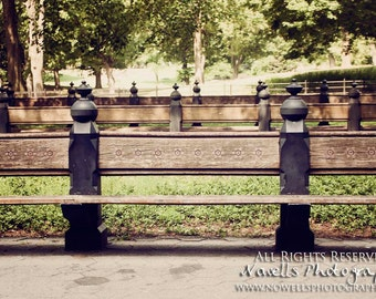 Benches at Central Park Mall in Summer - New York City Photography - Home Decor - Big Apple
