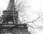 Paris in winter - Eiffel Tower with crow Print  Black and White Travel Photography  Romantic Chic Wall Decor - Christmas Gift
